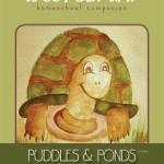 Puddles & Ponds