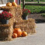 Harvest Time Preschool/Kindergarten Curriculum