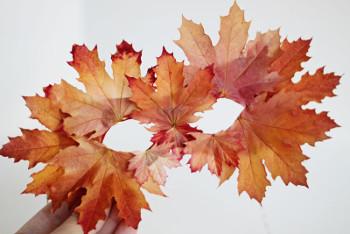 leaves13