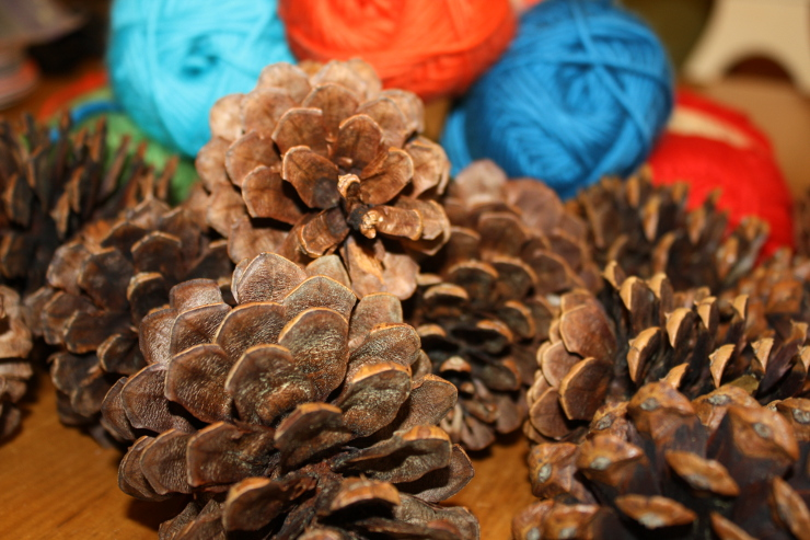 yarnpinecones-supplies740