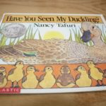 Book Nook – Have You Seen My Duckling?