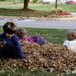 {This Moment :: Leaf Pile}