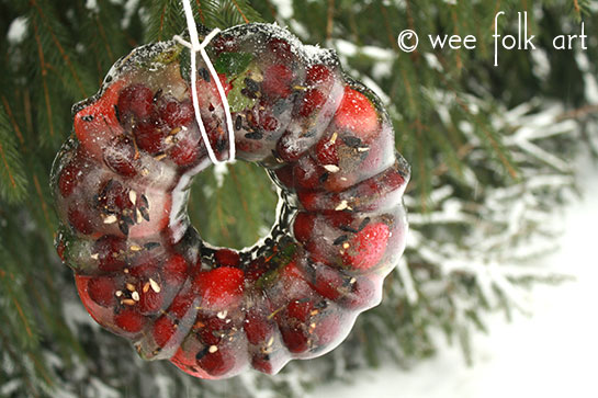 Frozen Fruit Ring Bird Feeder